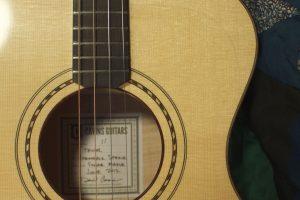Tenor guitar in sugar maple, no. 11, rope rosette and soundboard