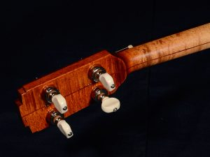 This tenor is a proud descendent of the banjo family and sports Waverly planetary tuners.