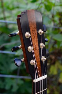 Closeup of guitar headstock.